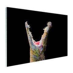 Krokodillen