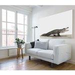 Canvas Krokodil