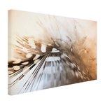 Verenfoto zacht licht - Canvas
