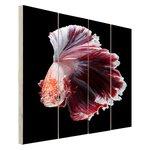 Sierlijke vis zwarte achtergrond - Hout