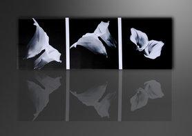 Bloemen - Canvas Schilderij Panorama 120 x 40 cm