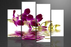 Orchidee - Canvas Schilderij Vierluik 130 x 80 cm