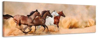 Galopperende paarden - Canvas Schilderij Panorama 118 x 36 cm