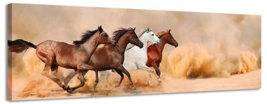 Galopperende paarden - Canvas Schilderij Panorama 158 x 46 cm