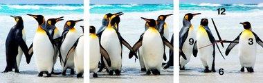 Pinguïns - Canvas Schilderij Klok Vierkanten