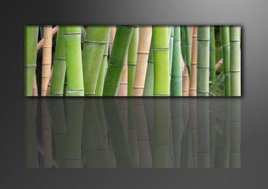 Bamboe - Canvas Schilderij Panorama 120 x 40 cm
