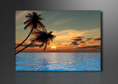 Palmbomen - Canvas Schilderij 80 x 60 cm