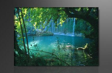 Bomen - Canvas Schilderij 80 x 60 cm