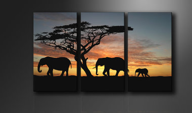 Afrika - Canvas Schilderij Drieluik 160 x 90 cm