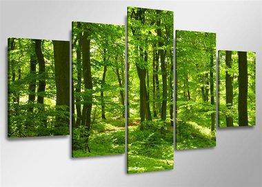Bomen - Canvas Schilderij Vijfluik 160 x 80 cm