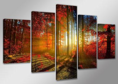 Bos - Canvas Schilderij Vijfluik 160 x 80 cm