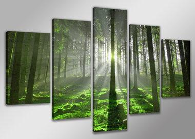 Bos - Canvas Schilderij Vijfluik 200 x 100 cm