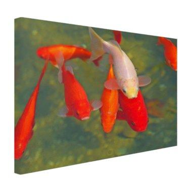 School met grote vissen - Canvas