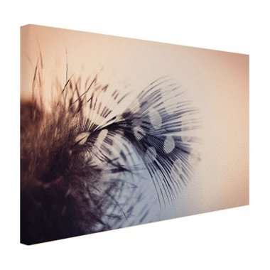 Veer fotoprint - Canvas