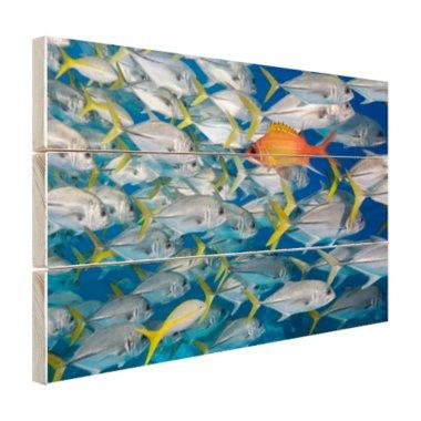 Vis zwemt in tegengestelde richting - Hout