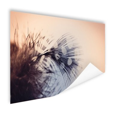 Veer fotoprint - Poster