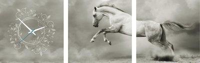 Wit paard - Canvas Schilderij Klok Vierkanten