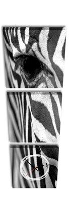Zebra - Canvas Schilderij Klok Vierkanten