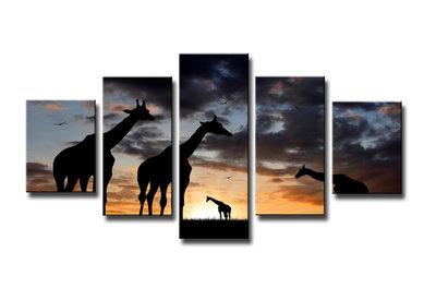 Giraffen - Canvas Schilderij Vijfluik 160 x 80 cm