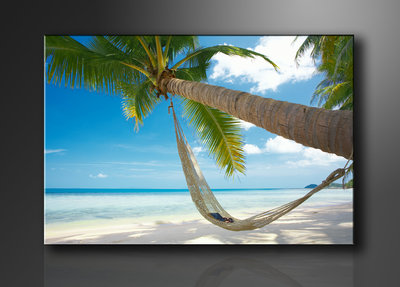 Palmboom - Canvas Schilderij 120 x 80 cm