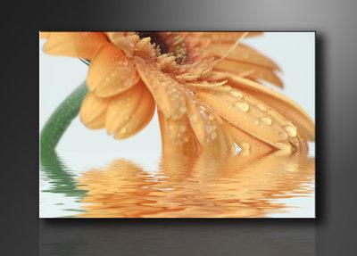 Bloemen - Canvas Schilderij 120 x 80 cm