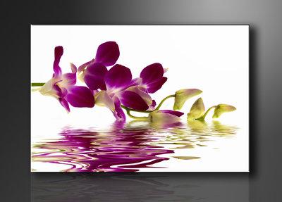 Orchidee - Canvas Schilderij 80 x 60 cm