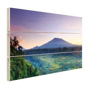 Mooie Houten Wanddecoratie.Indonesie Bali Rijstvelden En Vulkanen Hout